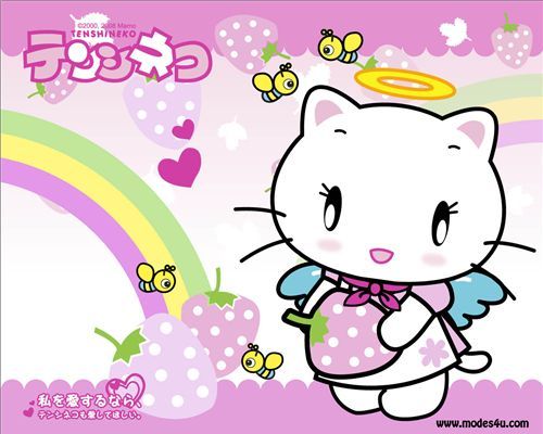 Free cute wallpaper on Facebook 4. Tenshi Neko kitty wallpaper