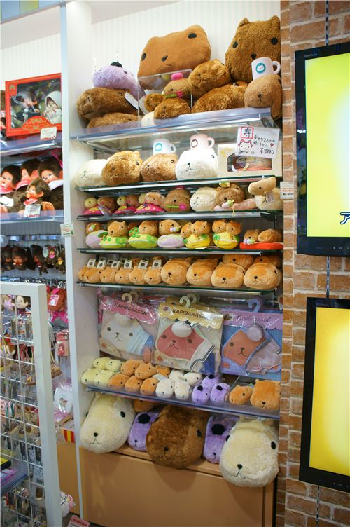 Lots of items from the cute Kapibarasan guinea pig