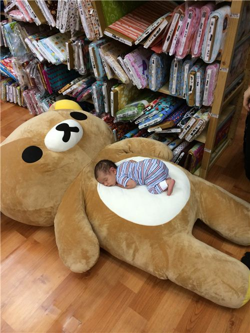 The bosses' son enjoys his nap on our big office Rilakkuma