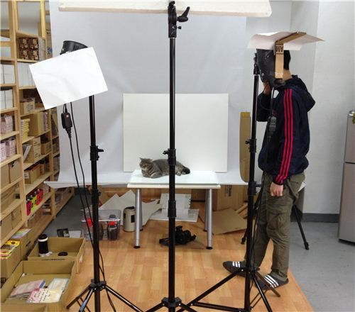 our photographer Ho finding the new model in our little photo studio